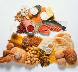 что кушать при белковой диете