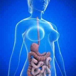 Спайки кишечника: причины, симптомы и лечение, диета