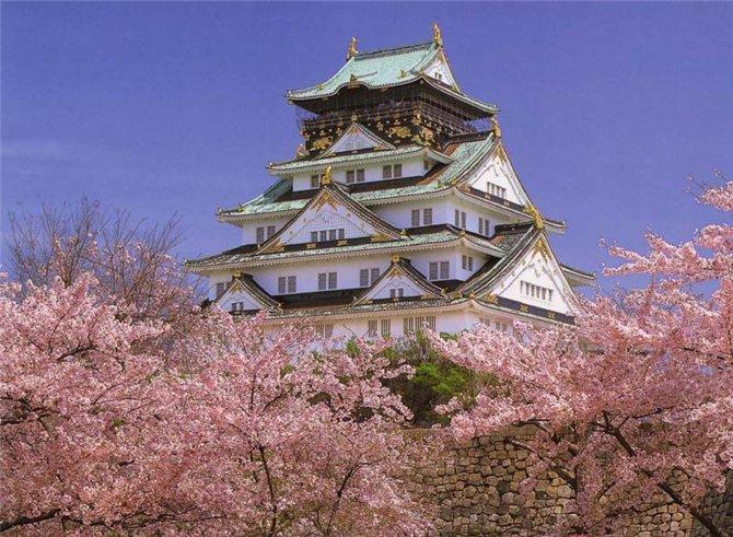 Японская бессолевая диета на 13 дней отзывы