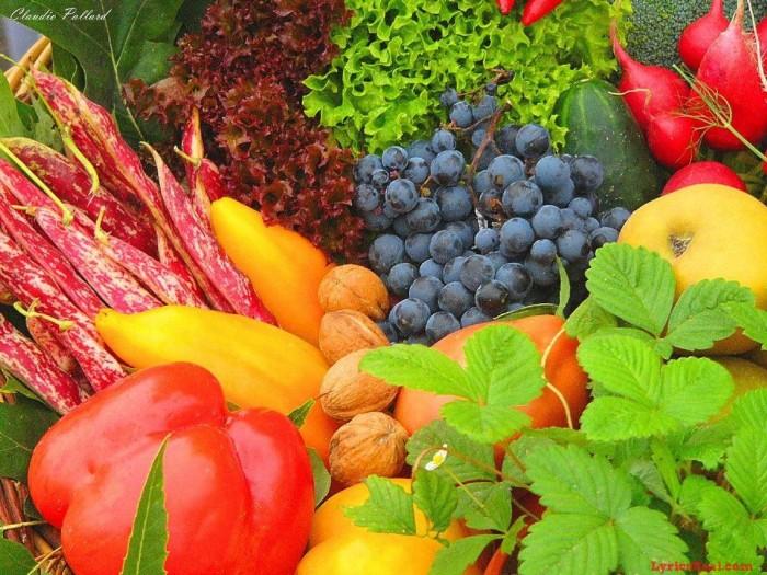 Белковая диета (диета — совокупность правил употребления пищи.